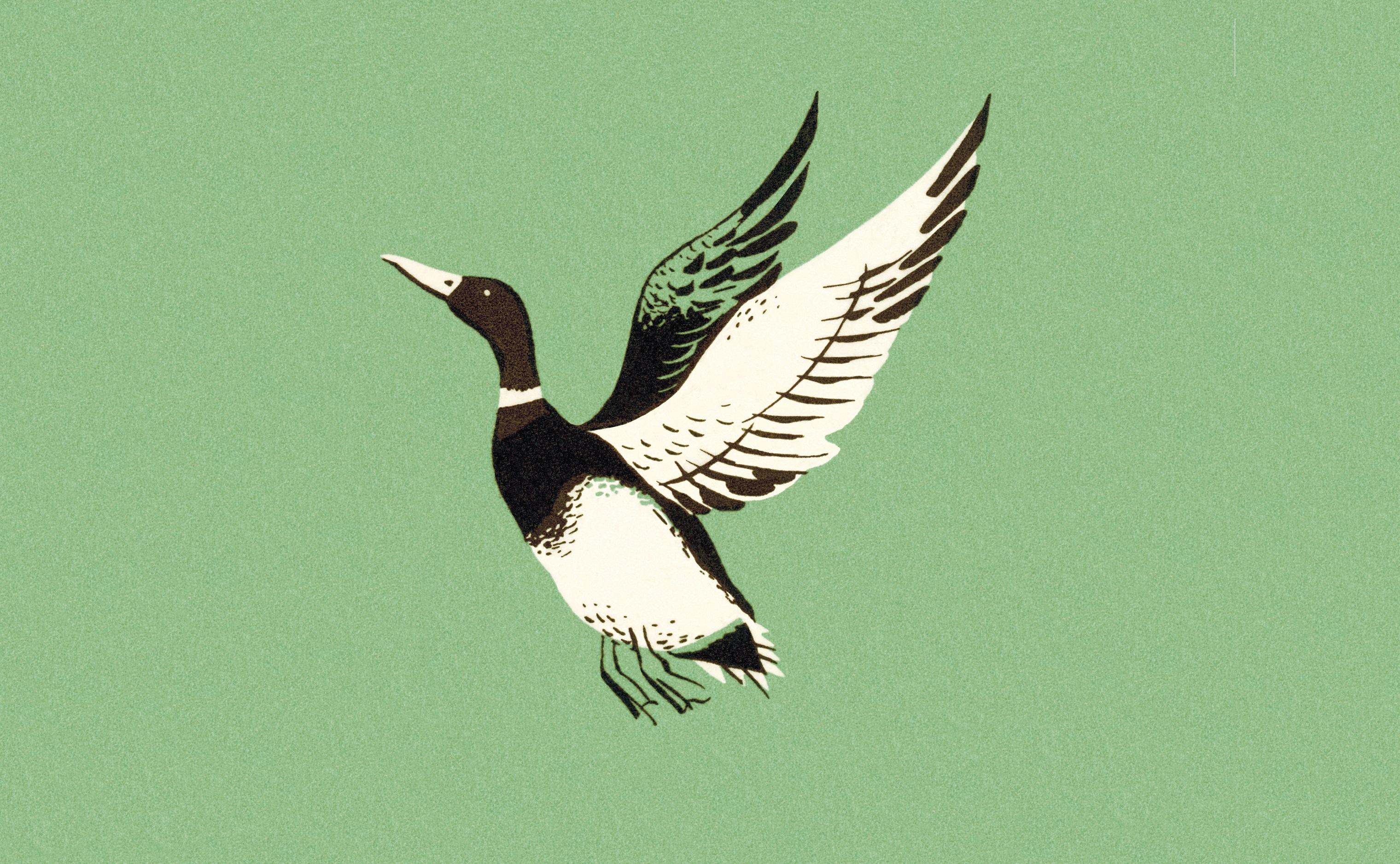 Managing customer service staff: 10 ways to turn ducks into eagles