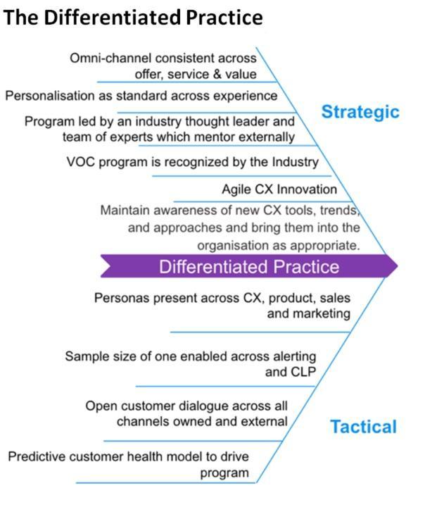 The differentiated practice agile CX