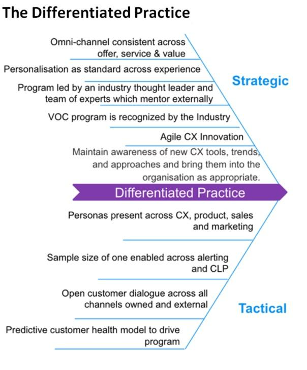 The differentiated practice agile CX