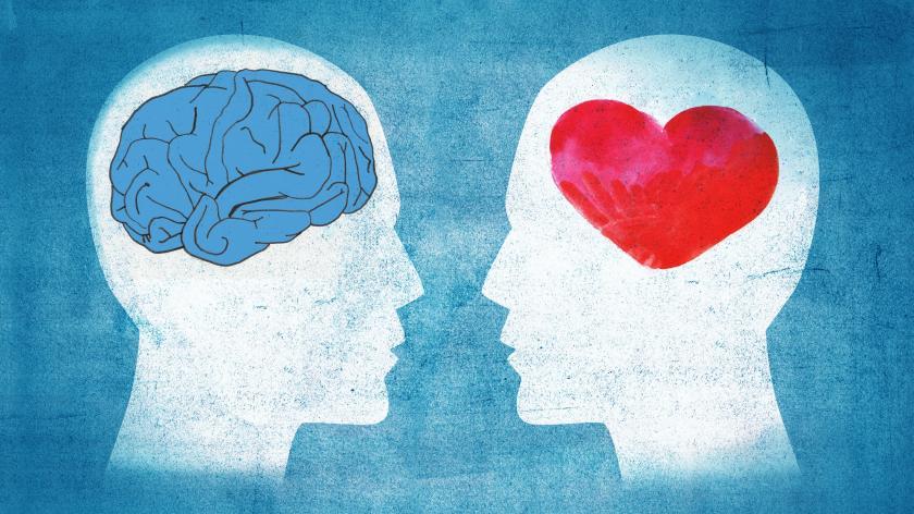 Brain heart marketing culture