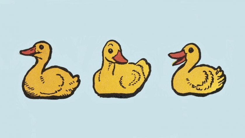 Ducks in a row sales, service, marketing