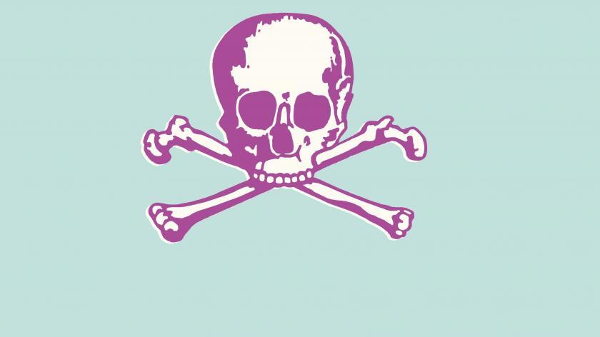 Customer service skull