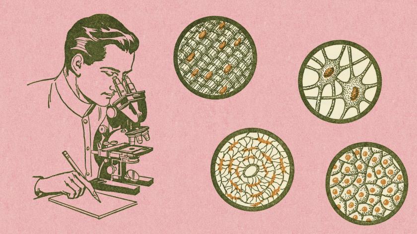 microscope science customer experience