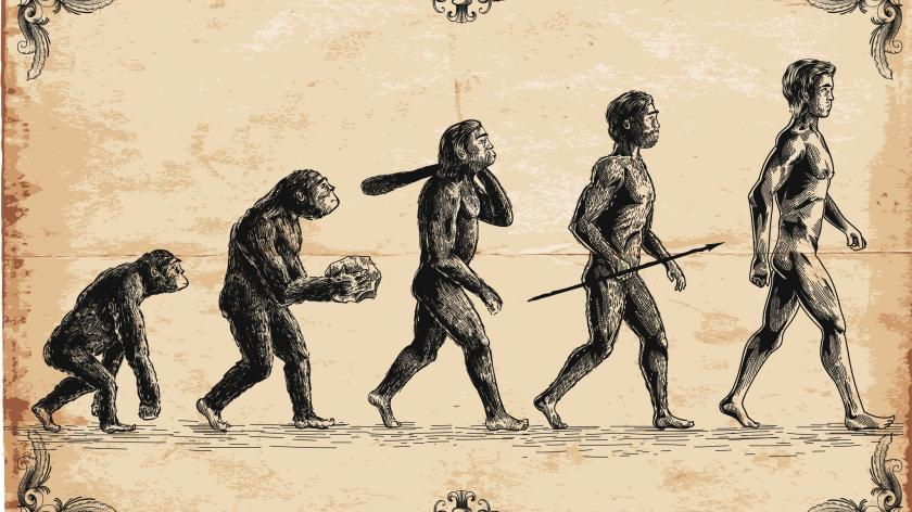 Evolution customer journey mapping